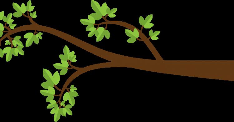 Cartoon Tree Branch